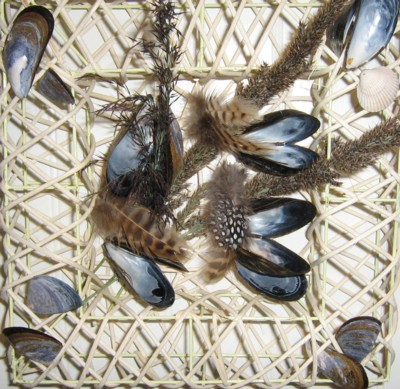 musselruta.jpg